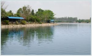 K R Puram Lake
